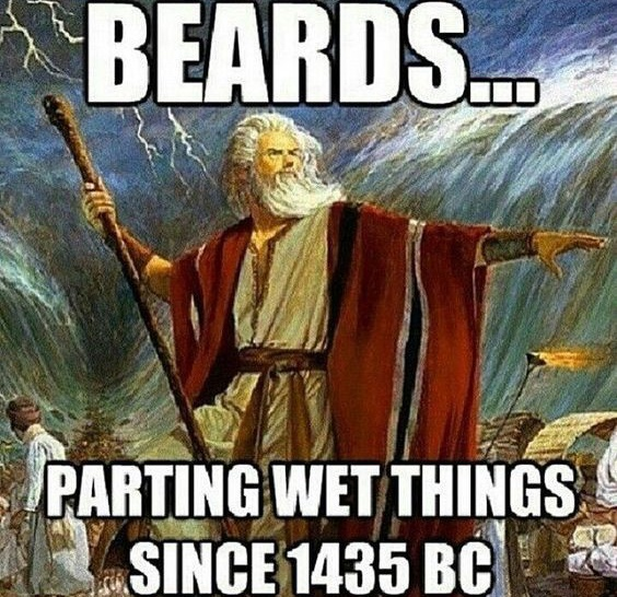 beards-parting-wet-things-since-1435-bc-beard-memes