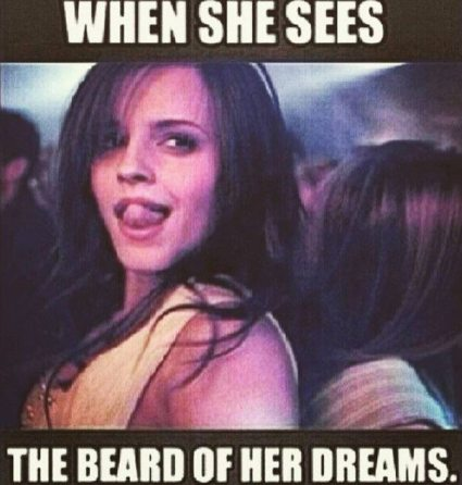 when-she-sees-the-beard-of-her-dreams-beard-memes
