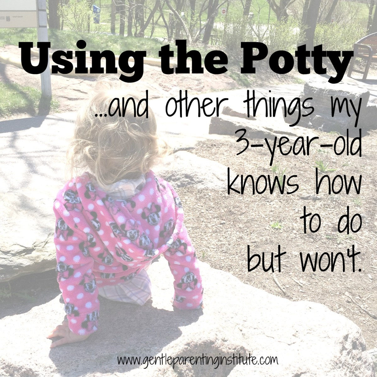 Using the Potty...and other things my 3-year-old knows how to do but won't.