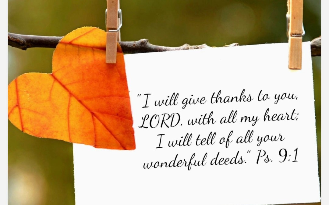 The Season of Thankfulness