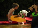 Kayak hopping - green harness for plucking him back into the boat.