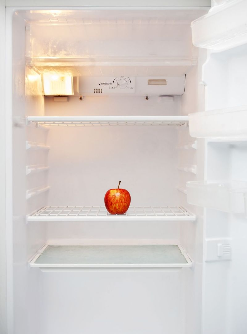 111114_Apple in empty fridge-2