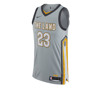 finest selection 4cc48 ce93a Nike | Cleveland Cavaliers | LeBron James | Authentic Jersey | Silver |  Gent's & G's