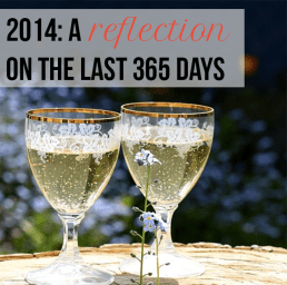 365: A Reflection of 2014