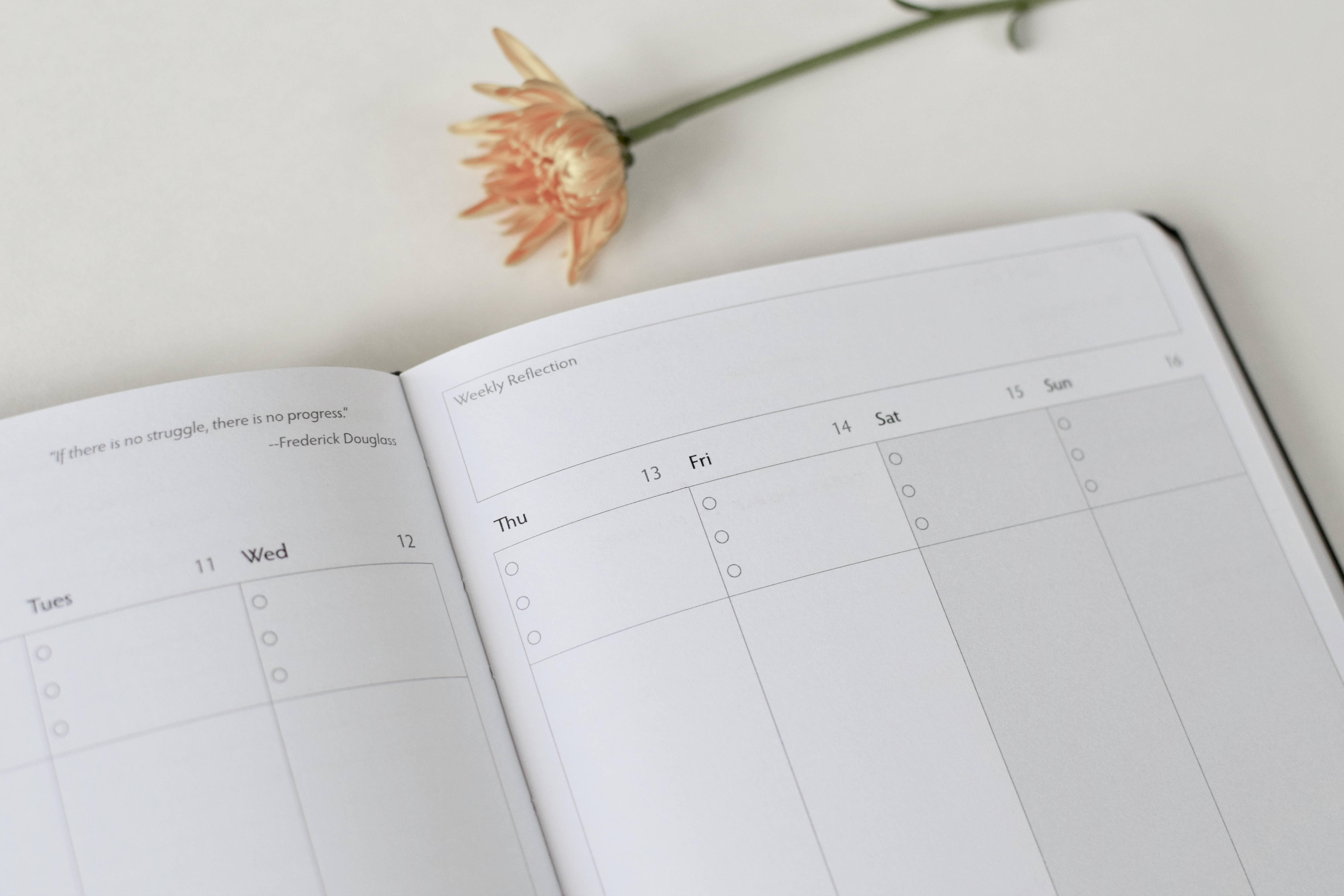 Unbound Planner Review 2019