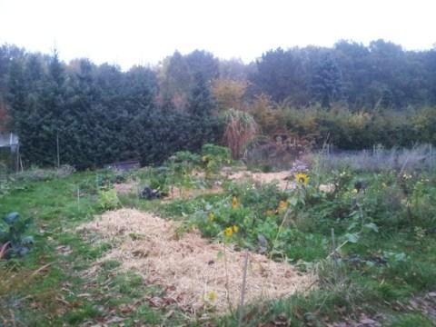 Mandala Garten im Herbst 2012.