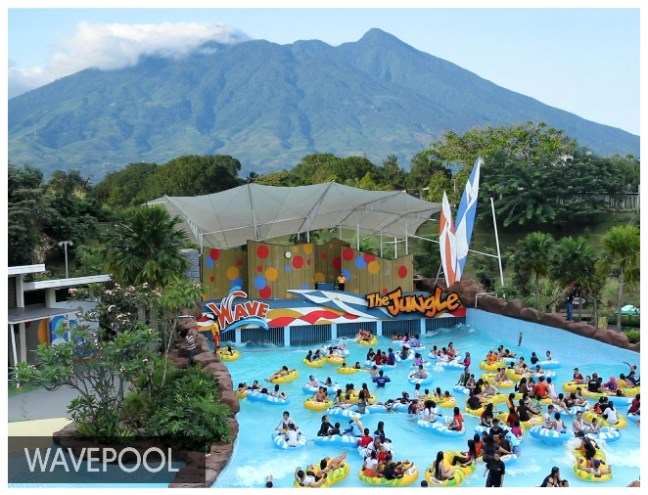 Wave Pool Jungle Waterpark