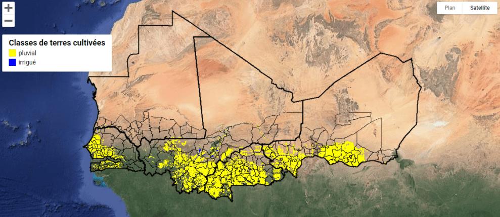 Une carte des terres cultivées à haute résolution pour le Sahel ouest-africain