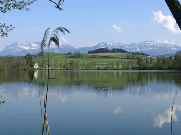 soppensee
