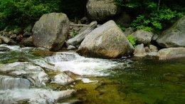 Hidden River Geocache