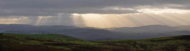 South Shropshire sunbeams