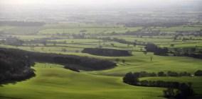 Landscape lines