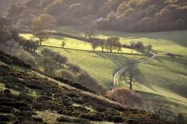 Cwms Farm lane