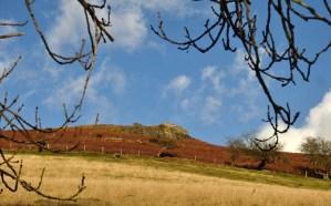 Last rocks on the ridge