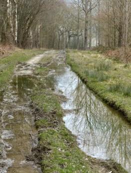 Wet under foot near The Speller