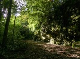 The path through the dingle