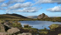 Doxey Pool