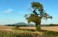 The Wrekin