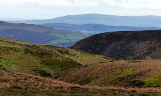 Interlocking landscape