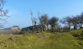 Bromlow Callow and Castle Ring