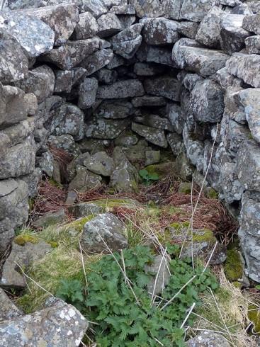 Chambered wall