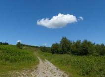 Climbing Jack cloud