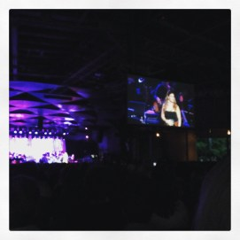 We saw Idina Menzel at Tanglewood. It was amazing and I'm glad we did it, the venue was excellent!