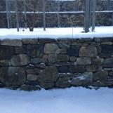2016 01-18 Arnold Arboretum Snow Day 1