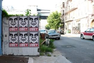 brooklyn-street-art-shepard-fairey-jaime-rojo-08-09