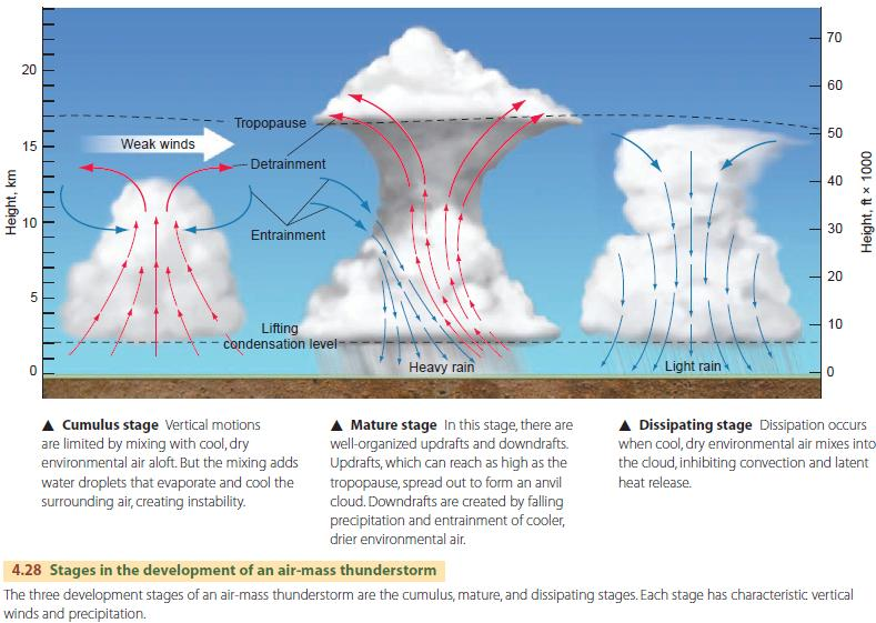 Image result for stages of thunderstorms