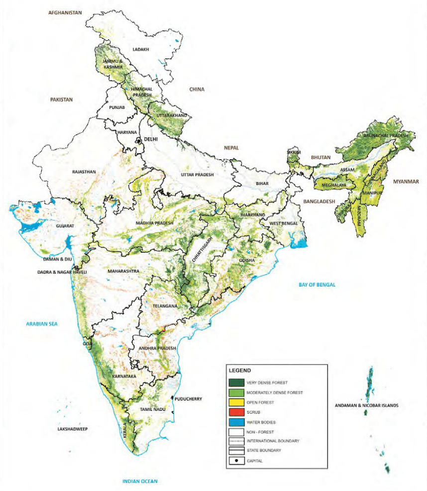 Natural vegetation in india includes tropical evergreen forests, tropical deciduous forests, montane forests, mangrove forests and tropical. Forest In Bihar Detailed Summary With Map Geography4u Com