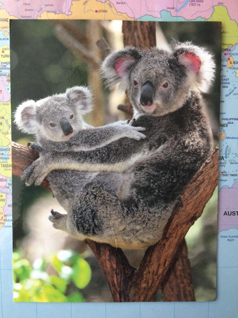 Lismore NSW Australia