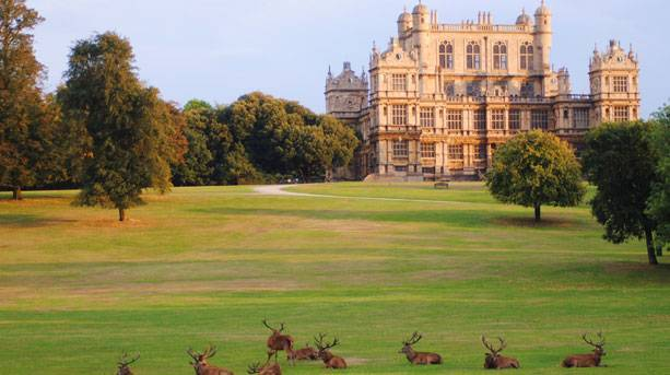 wollaton-hall-autumn