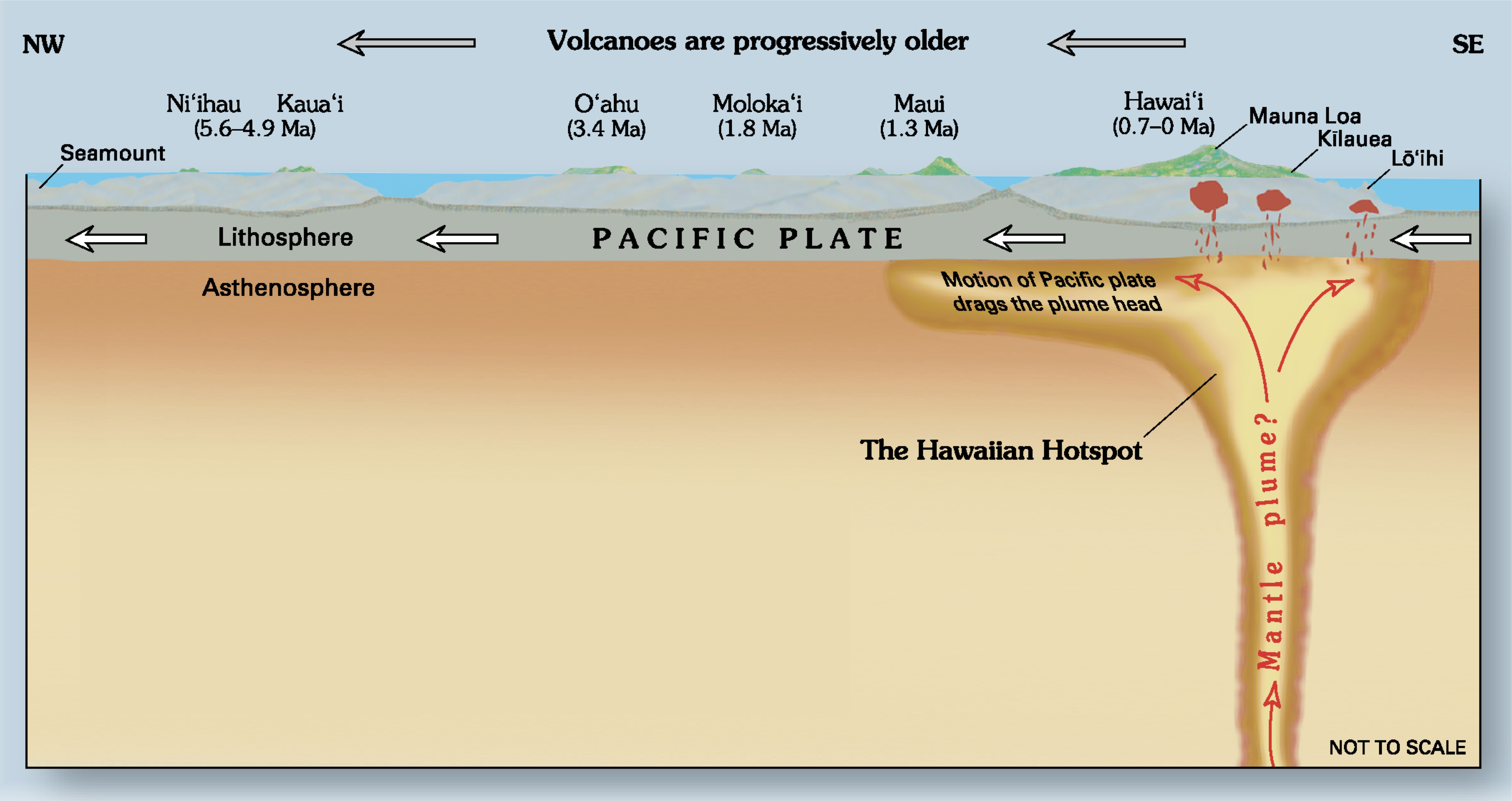 If Island Chains Like Hawai I Were Formed By The Continuous Movement Of A Plate Over A Magma