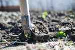 5 the importance of soil