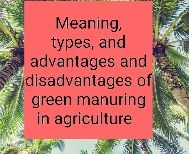 Meaning types, advantages and disadvantages of green manuring in agriculture