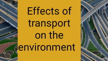 Effects of transport on the environment