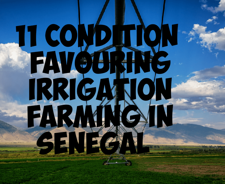 Conditions favouring irrigation farming in Senegal