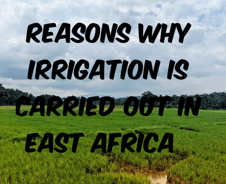 Factors for carrying out irrigation farming in East Africa