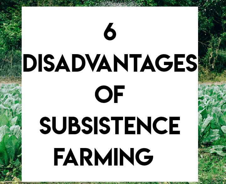 Disadvantages of subsistence farming