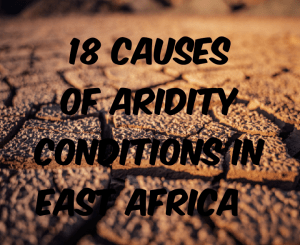 Causes of aridity condition in East africa