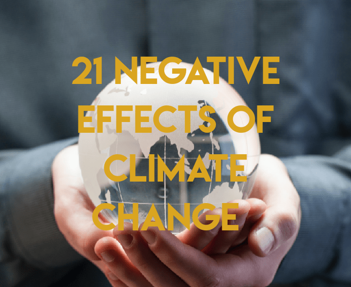Negative effects of climate change