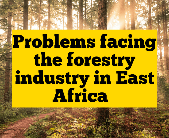 Problems facing the forestry industry in East Africa