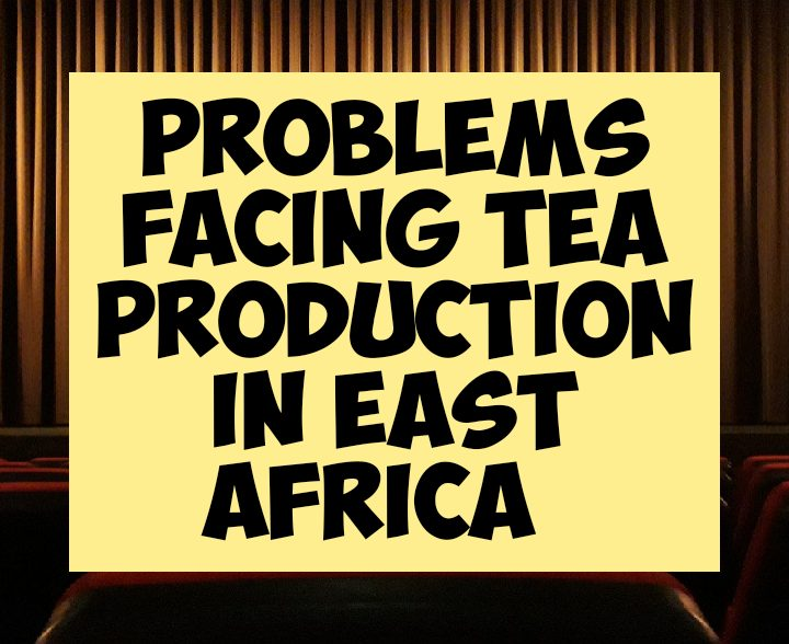 Problems facing tea production in East africa