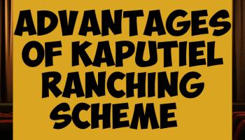 Advantages of kaputiel ranching scheme