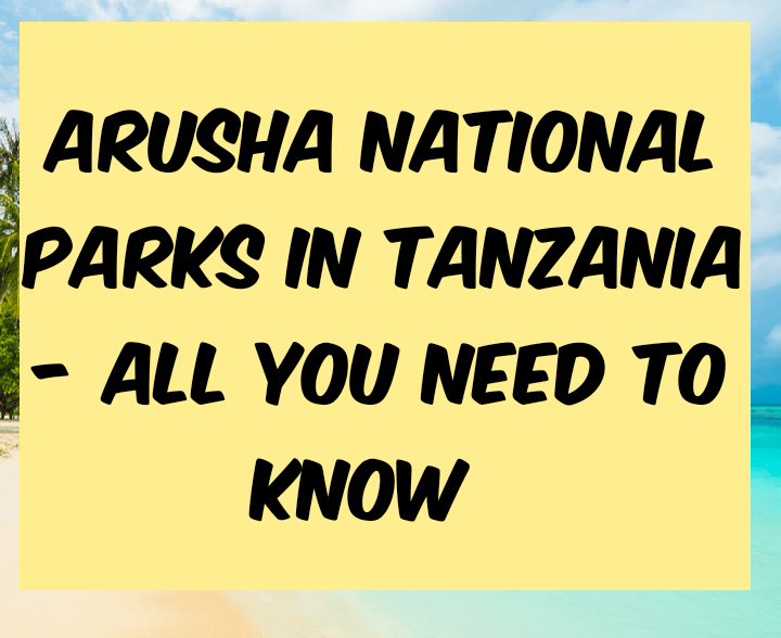 All you need to know about Arusha national park in Tanzania