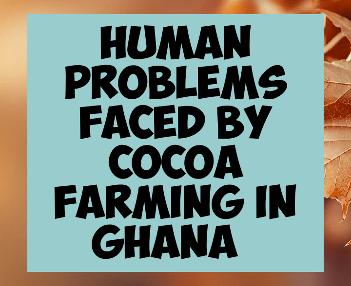 Human problems facing cocoa farmers in Ghana