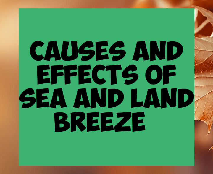 Causes and effects of sea and land breeze
