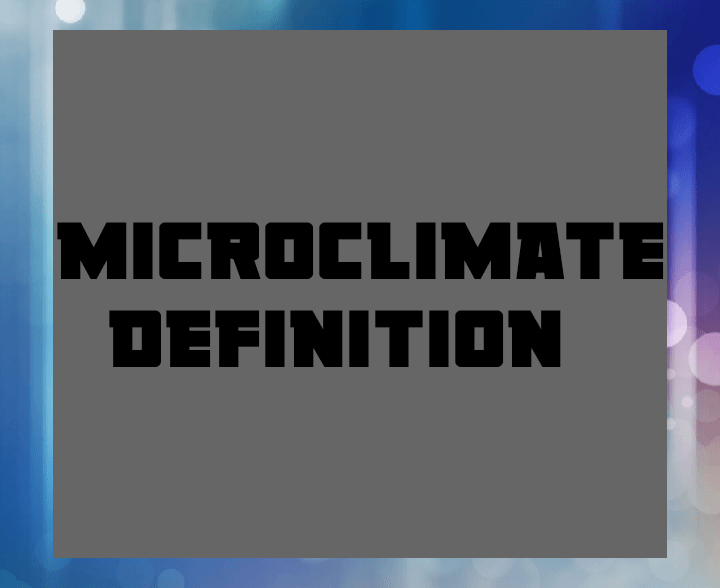 Micro climate definition