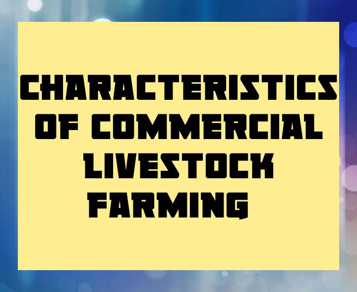 Characteristics of commercial livestock farming